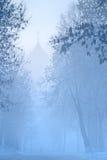Mannzahl geht in Nebel zur Kirche auf schneebedeckter Straße im Winter Russland Stockfotografie