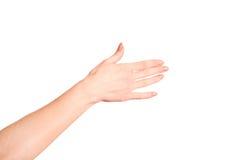 Mano abierta de la mujer con la manicura francesa Fotos de archivo libres de regalías