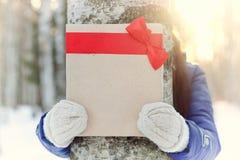Mano al aire libre del regalo de la muchacha del invierno Foto de archivo