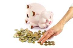 Mano che conta le euro monete dal porcellino salvadanaio Immagini Stock Libere da Diritti