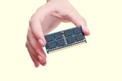 Mano che tiene il bastone di RAM Immagine Stock