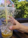 Mano che tiene la tazza di plastica della limonata con paglia immagine stock libera da diritti