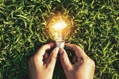 mano che tiene lampadina su erba energia di potere di concetto di eco in Na Fotografia Stock Libera da Diritti