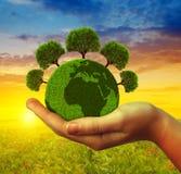 Mano che tiene pianeta verde con gli alberi fotografia stock