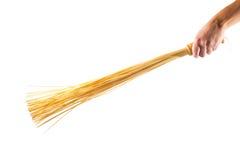 Mano che tiene una scopa di bambù Fotografia Stock Libera da Diritti