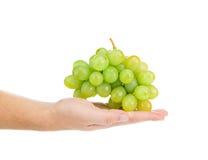 Mano che tiene uva verde Fotografia Stock
