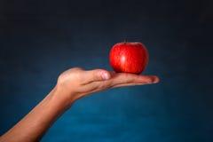 Mano con Apple rojo Imágenes de archivo libres de regalías