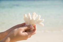 Mano con corallo Fotografia Stock