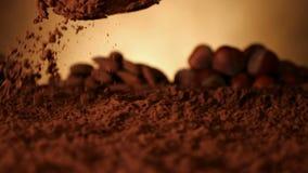 Mano con il cucchiaio che spinge attraverso il cacao in polvere - movimento lento archivi video