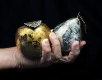 Mano con il metallo della pera e della mela Immagine Stock