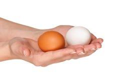 Mano con l'uovo fotografia stock
