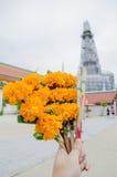 Mano con la flor para la adoración Buda en templo Imagen de archivo libre de regalías