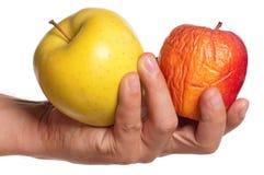 Mano con la manzana Imagen de archivo libre de regalías