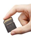 Mano con la tarjeta de memoria del SD Fotografía de archivo