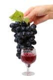 Mano con las uvas y el vino rojo fotos de archivo
