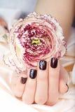 Mano con le brevi unghie dipinte colorate con smalto ed il fiore porpora scuri Immagini Stock