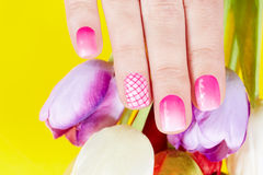 Mano con le unghie dipinte ed i fiori del tulipano Immagine Stock
