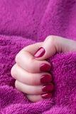 Mano con los clavos manicured cortos rojos con un fondo púrpura de la toalla fotos de archivo libres de regalías