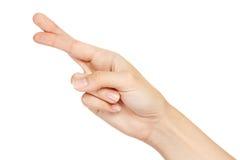 Mano con los dedos cruzados aislados Imágenes de archivo libres de regalías