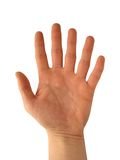 Mano con seis dedos Imágenes de archivo libres de regalías