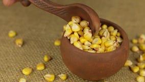 Mano con un cucchiaio per versare il grano del cereale da un vaso di argilla girante archivi video