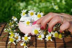 Mano con una crema naturale cosmetica Immagine Stock