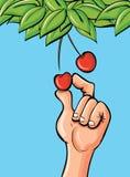 Mano de la historieta que escoge una cereza stock de ilustración