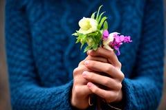 Mano de la muchacha que da las flores Imagen de archivo