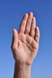 Mano de la mujer - cinco dedos se cierran imágenes de archivo libres de regalías