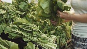 Mano de la mujer del vegano que selecciona la ensalada verde y hearbs en el supermercado Mujer que toma un manojo de ensalada ver almacen de metraje de vídeo
