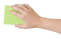 Mano de la mujer que sostiene la esponja verde de la limpieza aislada en blanco Imagen de archivo libre de regalías