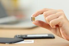 Mano de la mujer que sostiene una tarjeta micro del sim Fotografía de archivo libre de regalías