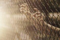 Mano de la niña del niño que sostiene la jaula de acero Imágenes de archivo libres de regalías