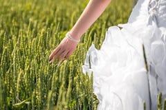 Mano de la novia en el campo Fotos de archivo libres de regalías
