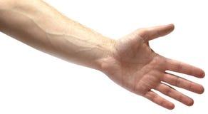 Mano de ofrecimiento del hombre para el apretón de manos en blanco Imagen de archivo
