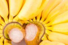 Mano de plátanos de oro en la comida sana de la fruta de Pisang Mas Banana del fondo blanco aislada Imágenes de archivo libres de regalías