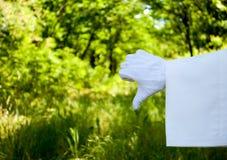 Mano de un camarero en un guante blanco que muestra una muestra de una aversión contra un fondo de la naturaleza fotografía de archivo