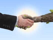 Mano del apretón de manos y árbol humanos de la mano Foto de archivo libre de regalías