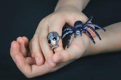 Mano del bambino con l'anello del cranio che tiene un ragno del giocattolo fotografie stock
