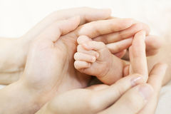 Mano del bambino nelle mani dei genitori. Concetto 'nucleo familiare' Fotografia Stock