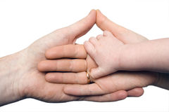 Mano del bebé que lleva a cabo las manos de padres aisladas Imagenes de archivo