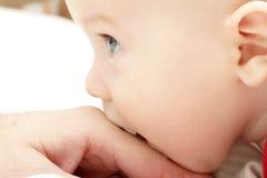 Mano del bebé y del padre Foto de archivo