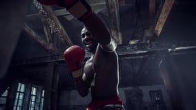 Mano del boxeador sobre fondo negro Concepto de la fuerza, del ataque y del movimiento foto de archivo