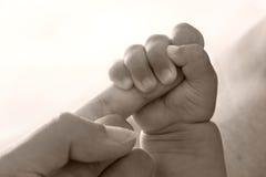 Mano del genitore della holding del bambino Fotografia Stock