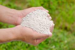 Mano del granjero que sostiene el fertilizante químico de la planta Fotos de archivo