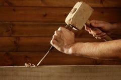 Mano del martillo de la herramienta del carpintero del cincel de madera del formón Imagen de archivo libre de regalías