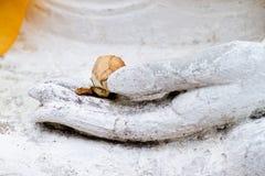 Mano del monumento de buddha imagen de archivo libre de regalías