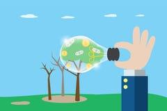 Mano del negocio que sostiene la bombilla para ver monedas y billetes de banco del árbol seco, de la idea y del concepto del nego Fotografía de archivo