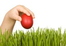 Mano del niño con el huevo de Pascua rojo Fotografía de archivo libre de regalías