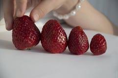 Mano del niño que elige las fresas imagen de archivo libre de regalías